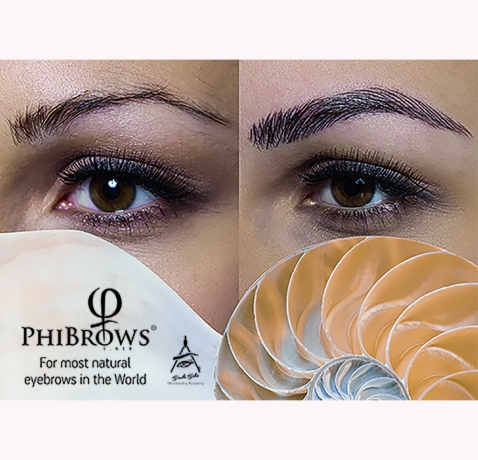 PhiBrows Canvas B2 novo